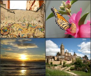four images in a collage, top left is graffitti on a wall, top right is a butterfly feeding on a pink camellia, bottom left is a sunset over the ocean, bottom right is a view of a cathedral and old city walls.